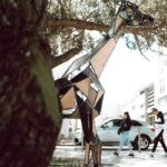 girafe ville nature